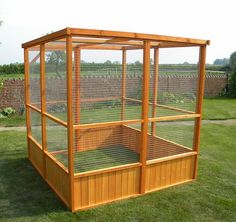 Flight pen - outdoor Aviary - can be built for indoor use also.