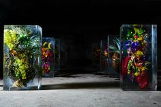 Exotic Floral Bouquets Locked in Blocks of Ice by Makoto Azuma