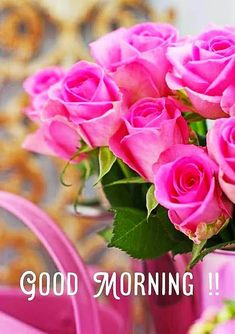 Good Morning Roses, Good Morning Photos, Good Morning Messages, Good Morning Greetings, Beautiful Rose Flowers, Love Rose, Pink Roses, Pink Flowers, Flowers Nature