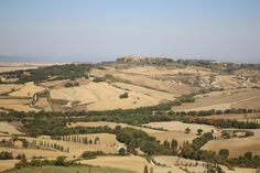 If you are planning a holiday in the Tuscan countryside, the Sienese area is definitely one of the best choices. Not far from Siena city centre is the Val d'Orcia , a hilly rural landscape included in the UNESCO heritage site list. ...