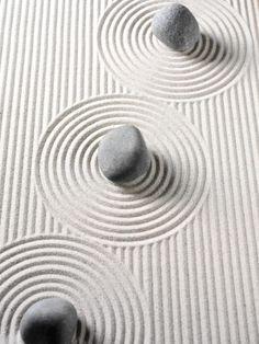 Whoopi   miniature zen garden