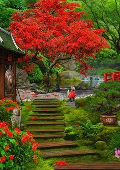 Fantasy Art Landscapes, Fantasy Landscape, Beautiful Landscapes, Beautiful World, Beautiful Images, Beautiful Gardens, Asian Garden, Japanese Landscape, Colorful Trees