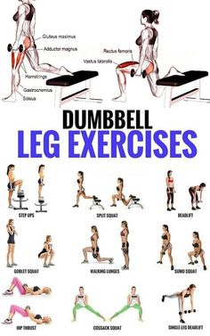 Top 5 Dumbbell Exercises for A Leg-Destroying Workout . - Top 5 Dumbbell Exercises for A Leg-Destroying Workout - Dumbbell Leg Workout, Sixpack Workout, Muscular Legs Workout, Weighted Leg Workout, Body Weight Leg Workout, Leg Workout Women, Toned Legs Workout, Weight Workouts, Gym Workouts Women