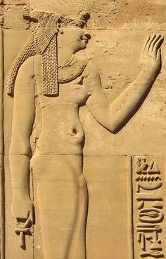 Reina ptolemaica