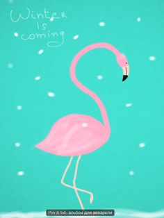 Winter is coming #pink #flamingo #tiffany