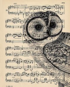 Owl drawing on sheet music