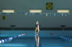 Dive in by photoedvin