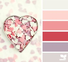 Valentine's palette from design seeds. Happy Valentine's Day to all.