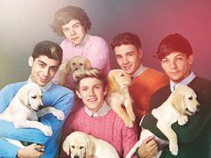 See pictures of One Direction's shoot with Wonderland magazine. Harry Styles, Niall Horan, Zayn Malik, Liam Payne and Louis Tomlinson wear woolly jumpers and hold puppies for the seventies-style photos. One Direction Songs, Members Of One Direction, I Love One Direction, One Direction Bedroom, One Direction Photoshoot, 0ne Direction, Niall Horan, Zayn Malik, Hayley Williams