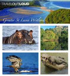 KOZI BAY is an amazing place. Today's Amazing Place – Greater St Lucia Wetlands… Santa Lucia, Places To Travel, Places To Visit, Travel Destinations, 1st December, Wetland Park, Marine Reserves, Kwazulu Natal, Travel Set