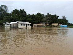 Especialistas buscam soluções a longo prazo para cheia no Amazonas  #amazonas #cheia