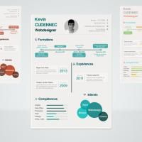 Infographic Resume, This freebie is a resume mockup designed with infographic-style. It includes a PSD file that can be easily edited to add your own information
