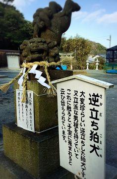 【子宝に恵まれる!】 福岡県遠賀郡水巻町の伊豆神社にある珍しい逆立ち狛犬。 反対側を覗くとなんとも御立派なおチ◯チ◯! サスサスすると子宝に恵まれるんだそうですよ❤︎