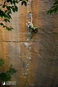 Monique Forestier, Orange Juice (5.12c), Funk Rock City, Red River Gorge, Kentucky, USA.