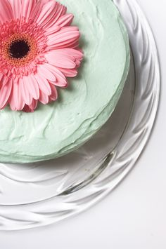 Simple White Cake with Vanilla Buttercream Frosting   Cups and Spoonfuls