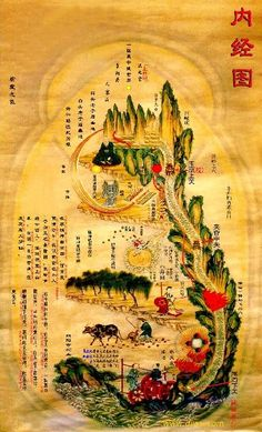 Daoist Healthpreserving--Wudang Qigong,Wudang Taoism,Taoist Alchemy,Meditation,Daoyin,Fasting,Baduan jin