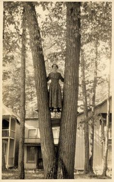 OK, young lady. You can come down now. - I guess I'm not the only one to climb a tree in a long dress!  ;)