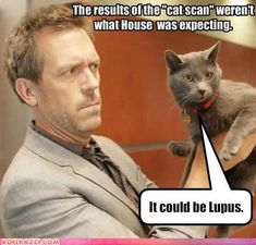 HAHAHAHA!!  You'd have to watch House to appreciate!!!