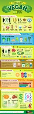 Curious about how to go vegan? We break it down for you with this simple, hip infographic.