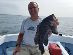 ging study reveals black bass change