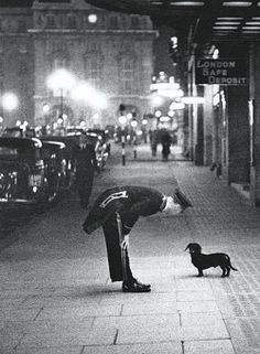 A liveried doorman engages a passing dachshund on the pavement outside 20 Regent Street, just south of the junction with Jermyn Street, in London's West End, circa 1936. The building in the distance is the old London County Fire Office at Piccadilly Circus. #london #england #dachshund