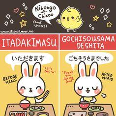 itadakimasu  gochisousama