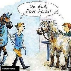 7 Of The Best Kept Grooming Secrets You Didnt Know About Yet - Horses Funny - Funny Horse Meme - - The post 7 Of The Best Kept Grooming Secrets You Didnt Know About Yet appeared first on Gag Dad. Funny Horse Memes, Funny Horse Pictures, Funny Horses, Cute Horses, Beautiful Horses, Funny Animals, Horse Humor, Funny Equine, Horse Riding Quotes