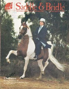 World Champion Sire Chubasco...American Saddlebred