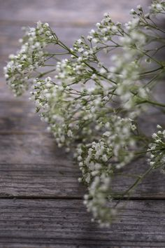 Happy Easter - Frohe Ostern Mehr unter: ckahr.com/blog #eggs #quaileggs #freshflowers #flowers