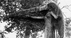 Η ΛΙΣΤΑ ΜΟΥ: Μαύρος Άγγελος: Το καταραμένο άγαλμα που «σκοτώνει...