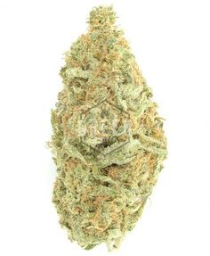 Medical marijuana Archives - Page 2 of 7 - Global Weed Shop Indica Strains, Weed Strains, Weed Shop, Buy Weed, Weed California, Weed Buds, Farm Online, Marijuana Recipes, Purple Candy