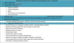 PROGRAMA EDUCATIVO PERSONALIZADO MEJORA DE LA ATENCIÓN