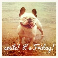 Happy Friday Everyone! This cutie is Smiling!