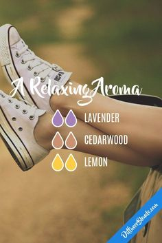 A Relaxing Aroma - Essential Oil Diffuser Blend - Lavender + Cedarwood + Lemon Essential Oil Diffuser Blends, Doterra Essential Oils, Natural Essential Oils, Aroma Diffuser, Doterra Blends, Doterra Diffuser, Young Living Oils, Young Living Essential Oils, Perfume