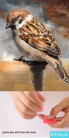 Now bring the painter in you come to life by creating this Sparrow diamond painting. Bird Paintings On Canvas, Bird Artwork, Cool Paintings, Animal Paintings, Watercolor Paintings, Bird Painting Acrylic, Sparrow Drawing, Sparrow Art, Arte Naturalista