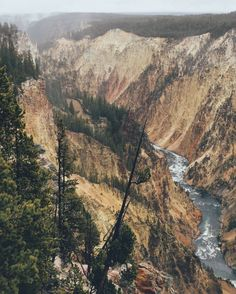 YELLOWSTONE'S TOP NATURAL WONDERS | Click to find out more!