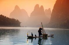 Fisherman using trained cormorant birds [Yangshuo, China]