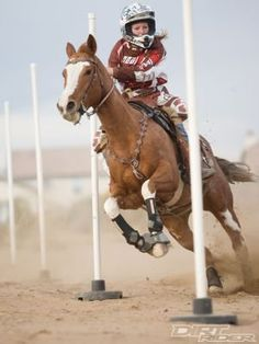 Read this article and it was Amazing! It was Horses vs. Dirt Bikes