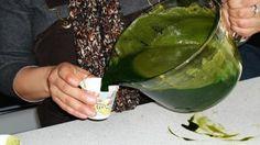 İki Günde Kanserli Hücreleri Öldüren Mucizevi Bitki Suyu