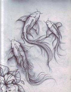 fish sketch by dennis adriano