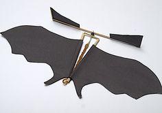 Bat.Beauty.jpg