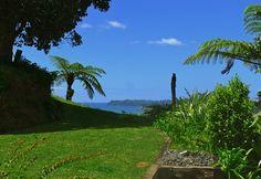 Luxury accomodation Whitianga New Zealand New Zealand, Golf Courses, Luxury, Plants, Planters, Plant, Planting, Planets