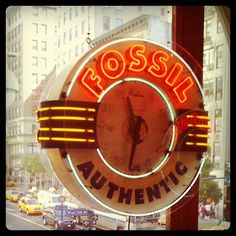 Authentic Fossil, New York City, New York