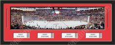 One framed large New Jersey Devils stadium panoramic with openings for 1, 2, 3, or 4 ticket stubs*, double matted in team colors to 39 x 13.5 inches.  The lines show the bottom mat color. $189.99     @ ArtandMore.com