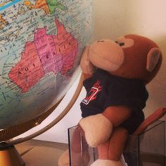 Xamarin monkey thinking about vacation. Photo by Craig Dunn, https://twitter.com/conceptdev