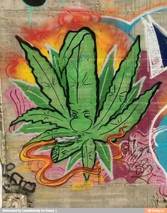 Life is too damn short to be stressed out or in pain all the time. Marijuana Facts, Cannabis, Medical Marijuana, Marijuana Funny, Graffiti Art, Dragon's Teeth, Stoner Art, Weed Art, Puff And Pass