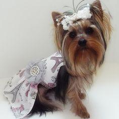 Cierra - Paris Dress