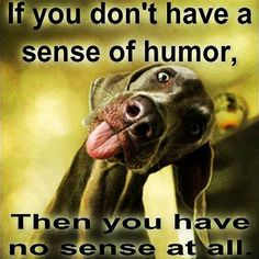 Lol!!! I love this face... Having a great sense of humor means that you're a positive personality and you attract exactly the same people in your life. So let's see who has a great sense of humor.  Post something humorous on your profile and tag me and 9 other people who you believe they're humorous as well and tell them to do the same.  Let's send positive vibes everywhere in the world.