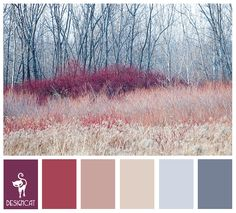 Winter Brush: Purple, Pink, Dusky, Blue, Slate, Grey, Mist - Colour Inspiration pallet