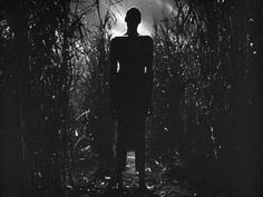 I Walked with a Zombie / Jacques Tourneur (1943)
